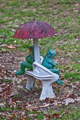 Frogs on love seat