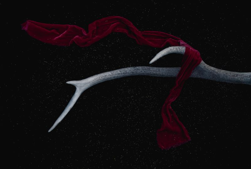 Antler red scarf